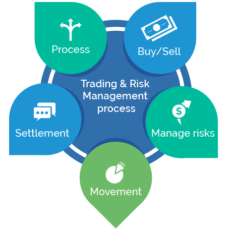 Trading & Risk Management Process