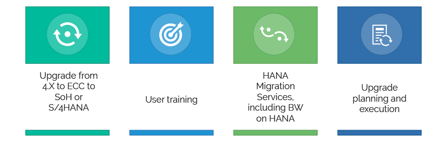 ERP Upgrade & Migration Process