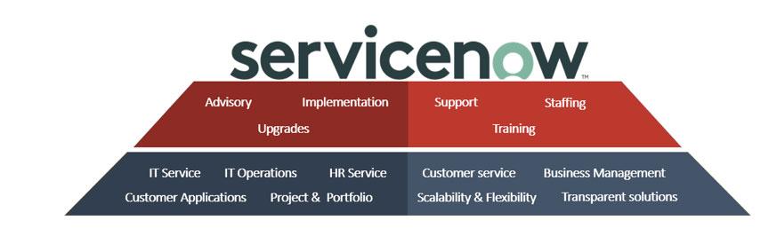 servicenow-infographic